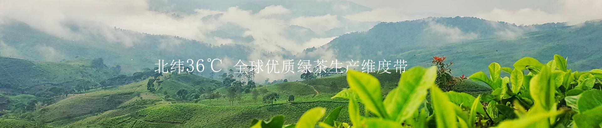 超级富农_豌青茶业官方网站
